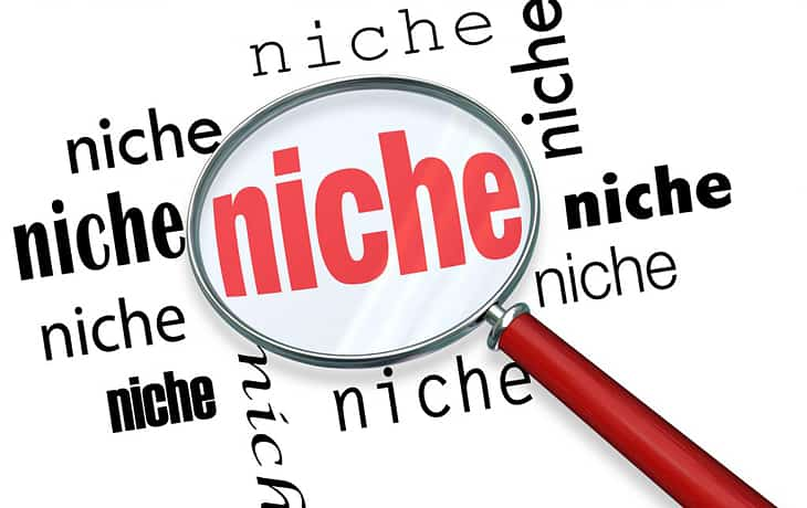 How To Start a Niche Website