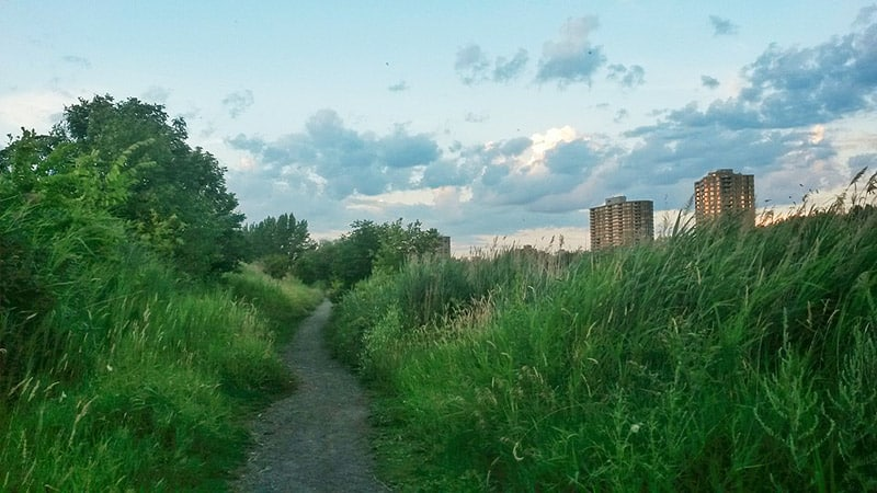 July 2016 Income Report: Verdun, in a park near St-Lawrence river