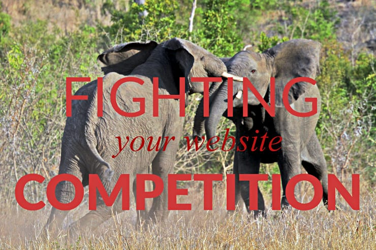 Niche Website Competitors: Two fighting elephants