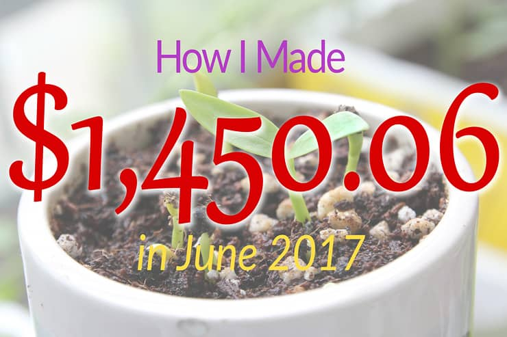 June 2017 income report