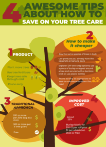 kapa99_tree_care_example_result