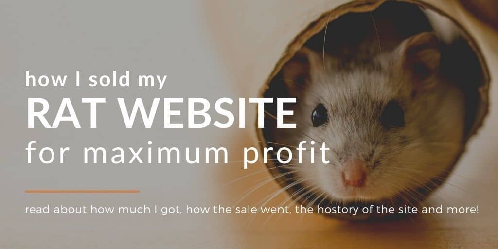 Selling Websites on Flippa : How I Made A Mind-Blowing Sale 🤯